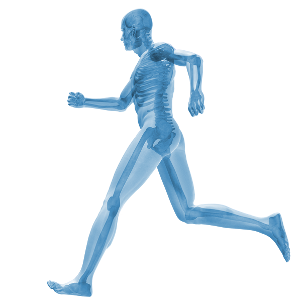 Maidenhead Physiotherapy and Sports Injury Clinic